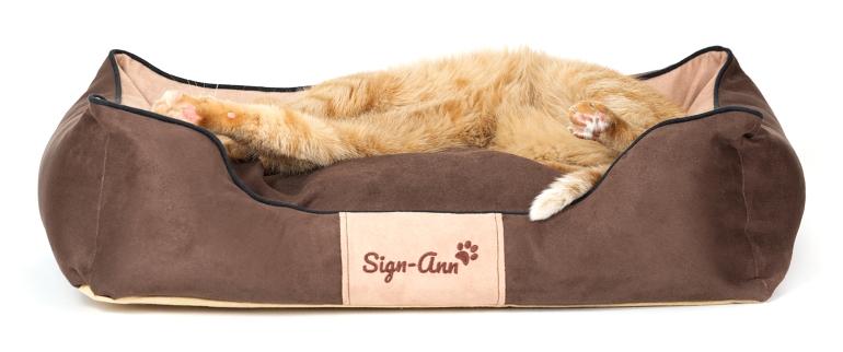 pelech pro zvířata s kočkou